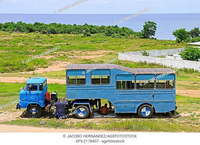 Camello.Public transport.Sancti Spíritus province.Cuba