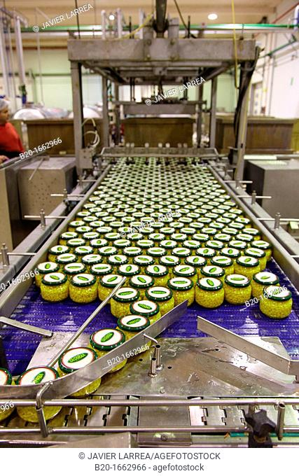 Production line of canned vegetables and beans in glass bottle, Corn, Maize, Canning Industry, Agri-food, Logistics Center, Gutarra, Grupo Riberebro
