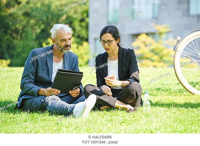 Serious business colleagues looking at mobile phone and discussing while sitting on grassy field