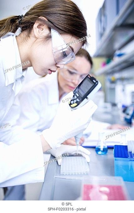 Lab assistants using pipette