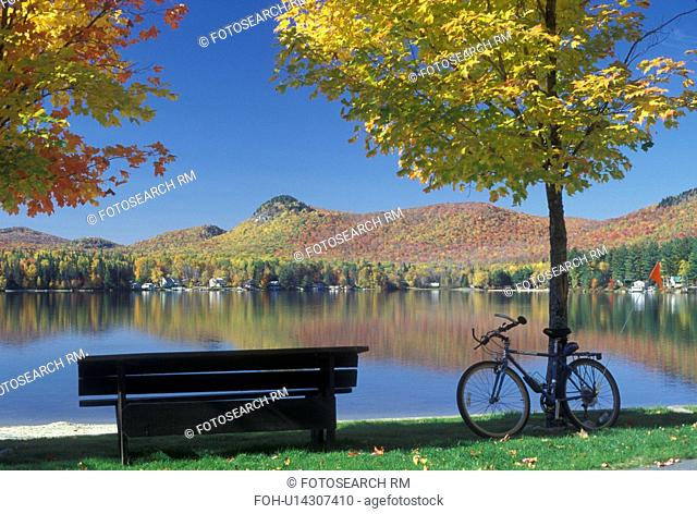 lake, bench, bike, fall, Groton State Forest, VT, Vermont, Empty park bench and bike leaning on a tree on Boulder Beach on Lake Groton in Groton State Forest in...