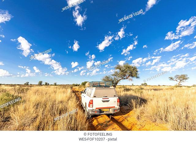 Africa, Botswana, Kgalagadi Transfrontier Park, Mabuasehube Game Reserve, off-road vehicle on sand track