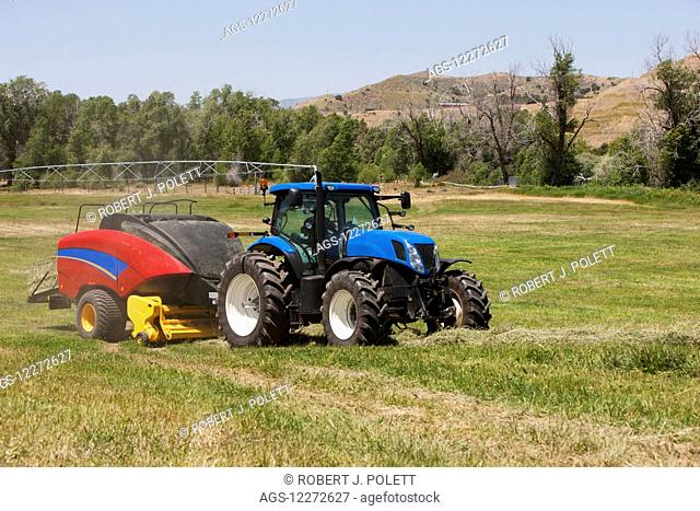 New Holland T7 Tractor with BB340 large square baler baling alfalfa in a river bottom with irrigation in background; Preston, Idaho, United States of America