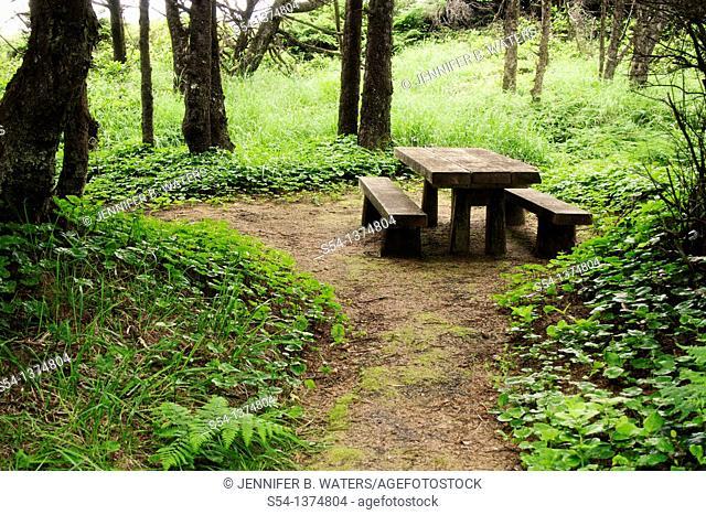 A picnic table at Seal Rock State Park, Newport, Oregon, USA