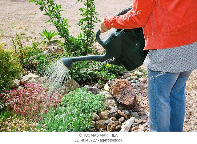 A woman is taking care of the garden in the summer