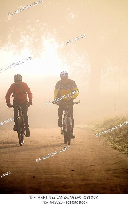 Cyclists, Guadarrama Regional Park, Villanueva de la Cañada, Madrid Province, Spain
