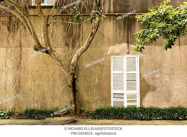 Shutters on a weathered wall in historic Charleston, SC