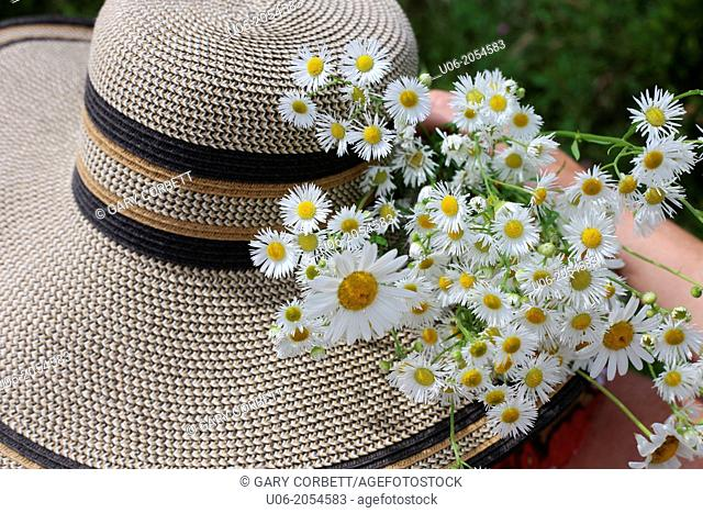 a wide brimmed women's sun hat and a bouquet of daisies