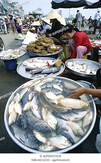 Fresh Fish, Local Produce, Market, Can Tho, Mekong Delta, Vietnam