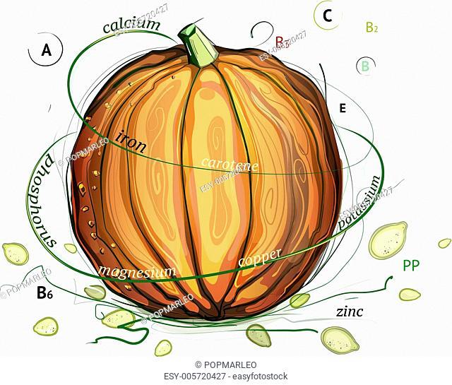 Pumpkin and Seeds Vitamins Illustration