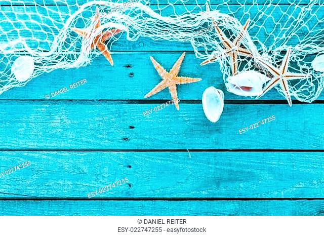 Delicate marine border of net, shells and starfish