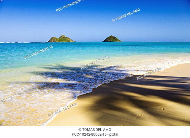 Hawaii, Oahu, Lanikai Beach, Mokulua Islands, scenic landscape with palm tree shadow