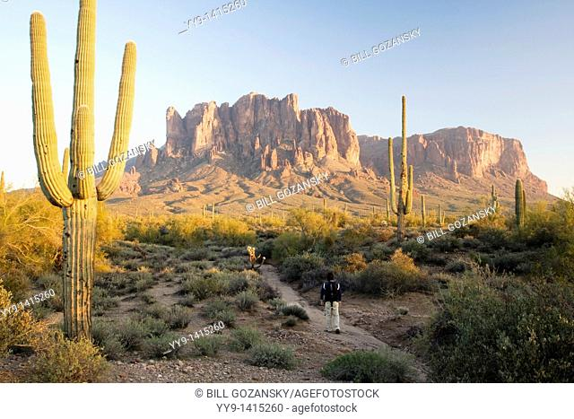 Hiker on trail to Superstition Mountains - Lost Dutchman State Park - Apache Junction, Arizona