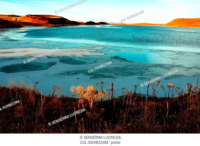 Lake Myvatn, Akureyri, Eyjafjardarsysla, Iceland