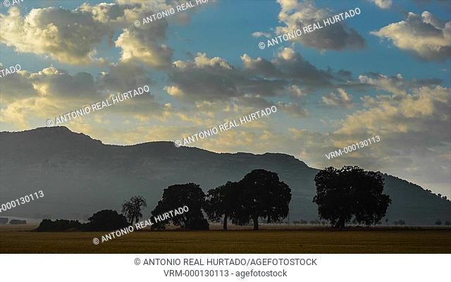 Cloudscape. Almansa. Albacete province. Spain