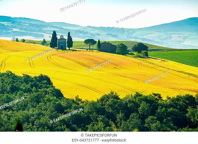 Natural landscape of summer at beautiful hilly field Tuscany with a little chapel of Madonna di Vitaleta in Valdorcia Italy