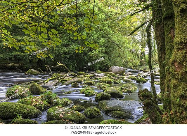 Dartmeet, Dartmoor, Devon, England, United Kingdom