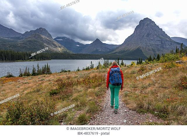 Woman walking on a hiking trail, Two Medicine Lake, Glacier National Park, Montana, USA, North America