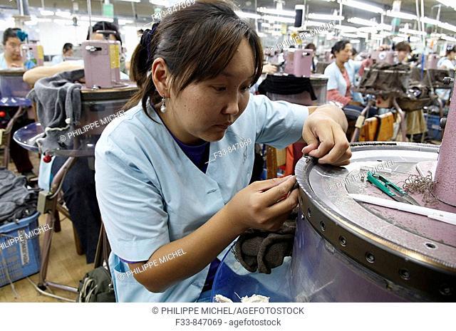 Mongolia. Ulaan Bator. Gobi cashmere factory