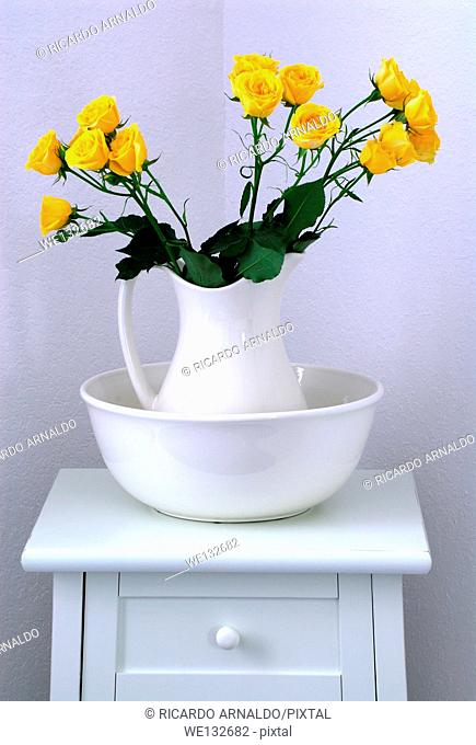 Yellow Miniature Roses