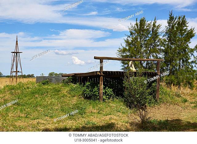 Rural landscape impressed