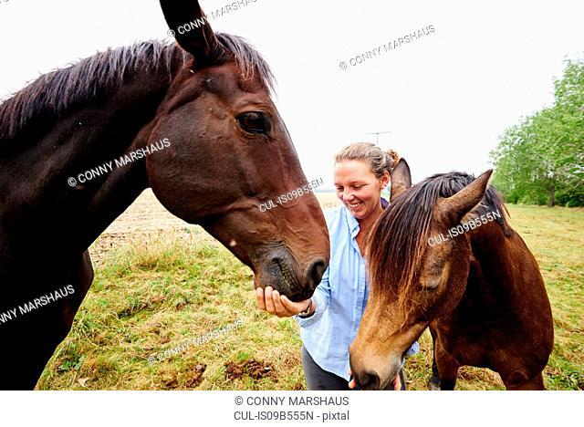 Woman feeding two horses in field