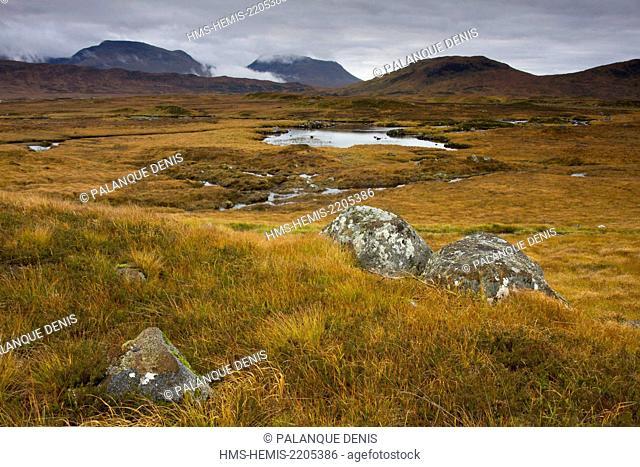 United Kingdom, Scotland, Highland, Rannoch Moor,Bogs and Landes behind the Black mount am monadh dubh, Ramsar convention