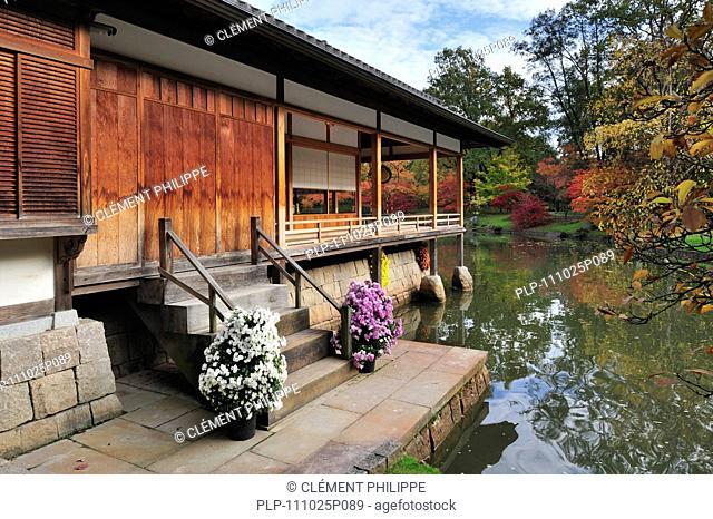 Pavilion / Tea house in Japanese garden in autumn at Hasselt, Belgium