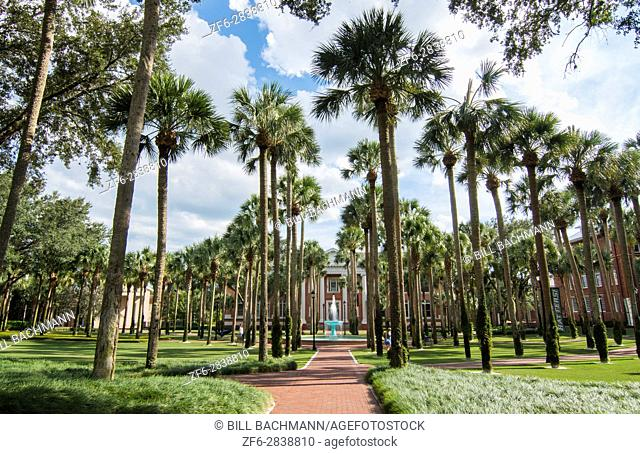 Deland Florida Stetson University fountain and Palm Court with palm trees peaceful in small town education,