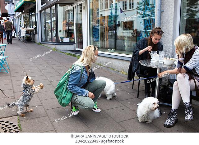 Restaurants and shops in Center Town, Reykjavik, Iceland
