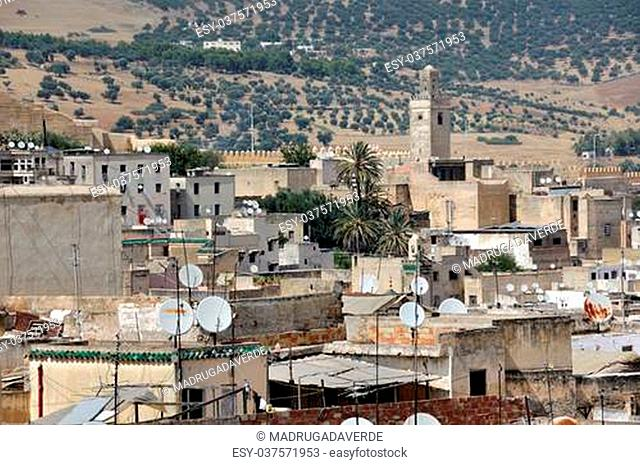 View of Fez medina (Old town of Fes), Morocco with fields at the backgorund