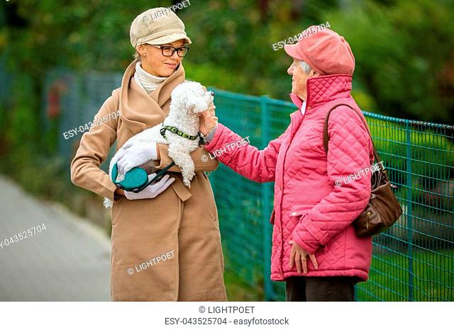 Senior woman walking her little dog on a city street with her granddaughter; looking happy and relaxed (shallow DOF)