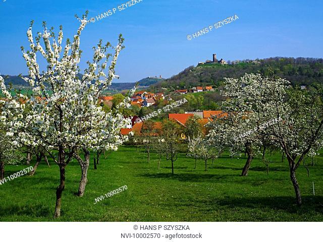 Muehlberg with Gleichen Castle and Muehlburg Castle, Drei Gleichen, Thuringia, Germany