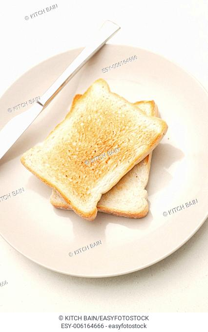 Toast on a plate isolated on a kitchen bench