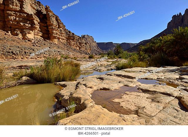 Water in Iherir Canyon, Tassili n'Ajjer National Park, UNESCO World Heritage Site, Sahara desert, North Africa, Algeria