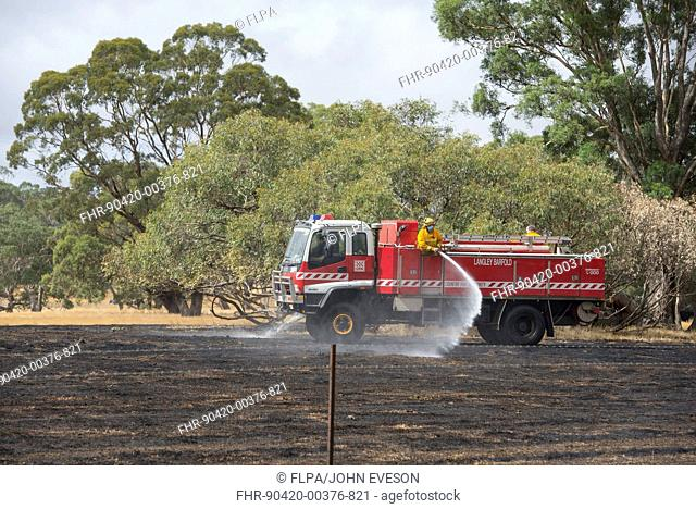 Country Fire Authority firemen putting out grass fire, Langley, Victoria, Australia, February