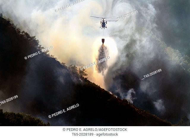 August 2013 Lugo Fire in Navia, in Ancares, Natura protected area, Biosphere and reserba. It affects more than 500 hectares of forest