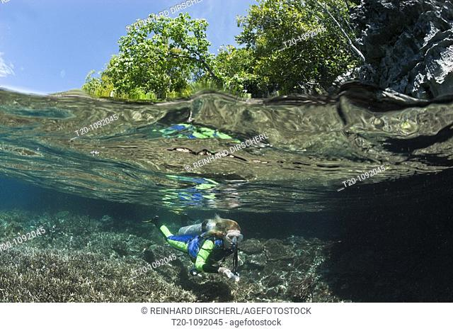 Snorkeling at shallow Coral Reef, Raja Ampat, West Papua, Indonesia