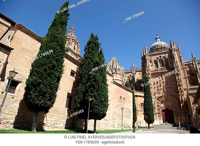 Overview of the New Cathedral 16th century, Salamanca, Castilla y Leon, Spain, Europe