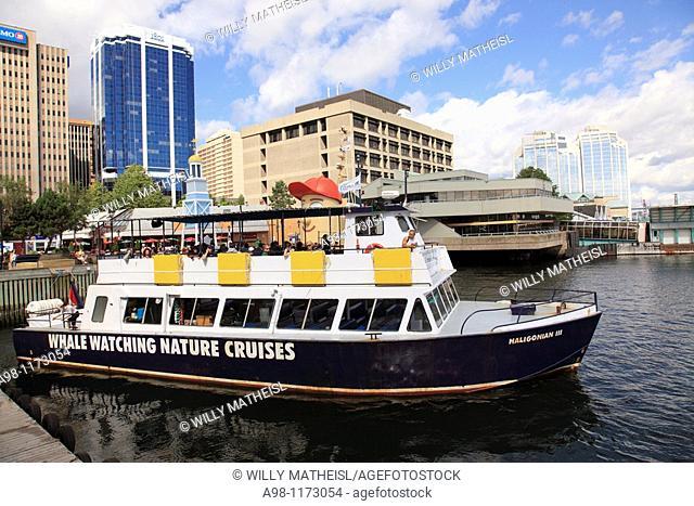 tourist boat for Whale watching cruise disembarking the city of Halifax Boardwalk, Nova Scotia, Canada, North America