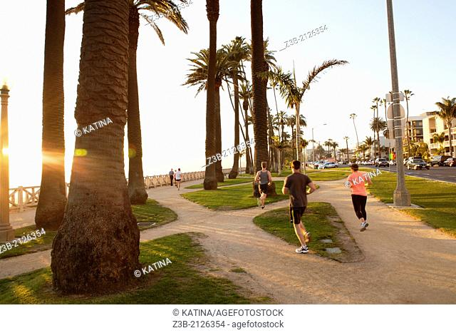 Joggers run through Palisades Park in the late afternoon sun, Santa Monica, City of Los Angeles, California, USA
