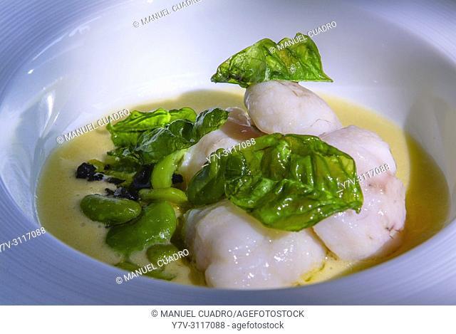 Plato de Carrillera de rape, su jugo trufado y habitas de temporada (Monkfish cheeks, truffled juice and beans). Restaurante Aretxondo