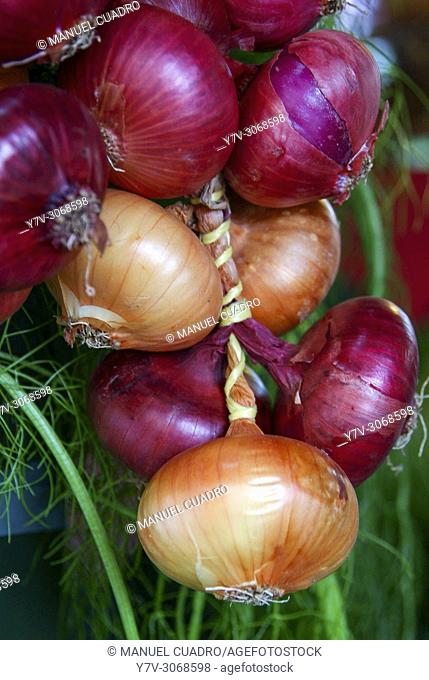 Red onions displayed in the Caserio (farm) produce market held on the last Monday of October in Gernika, Biscay, Basque Country, Spain