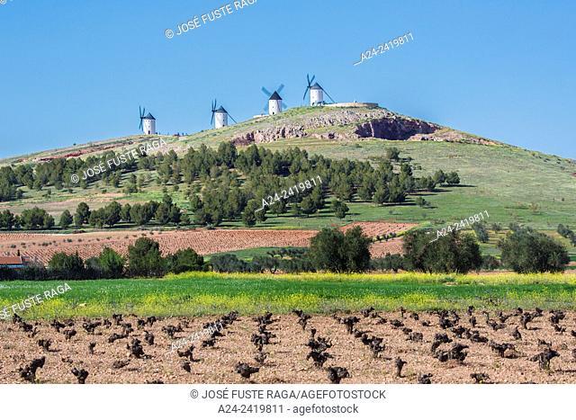 Spain , La Mancha region , campo de criptana area, Windmills
