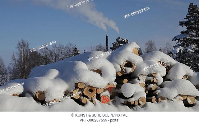 Felled snow-covered logs are stacked, waiting for transport. In the background are smoking factory chimneys. Panning shot