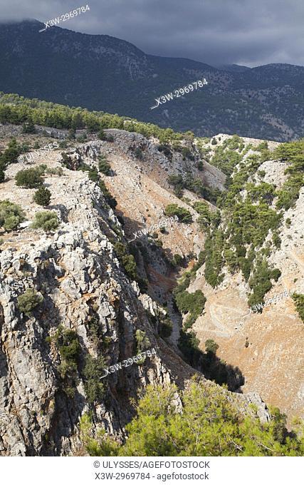 Aradena gorge near Anopoli village, area of Sfakia, Crete island, Greece, Europe