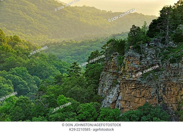 Rocks and forest overlooking Cedar Creek Canyon, Petit Jean State Park, Arkansas, USA