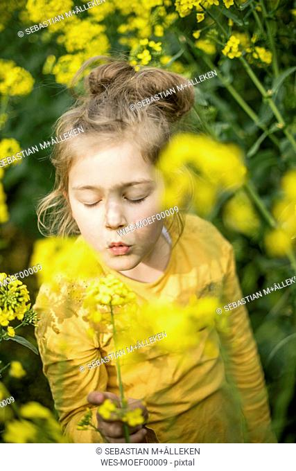 Girl in rape field