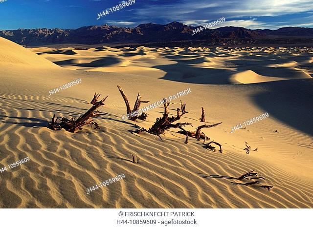 Mesquite Flats Sand Dunes, Sand dunes, Death Valle