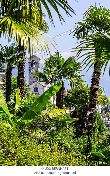 Park of the Hotel Rivabella and view of place, Brissago, Lago Maggiore, Ticino, Switzerland